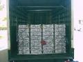 chick-shipments